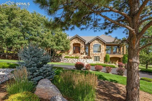 1990 Fox Mountain Point, Colorado Springs, CO 80906 (#8854044) :: The Treasure Davis Team | eXp Realty