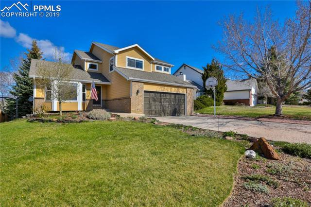 7670 Conifer Drive, Colorado Springs, CO 80920 (#8854068) :: The Peak Properties Group