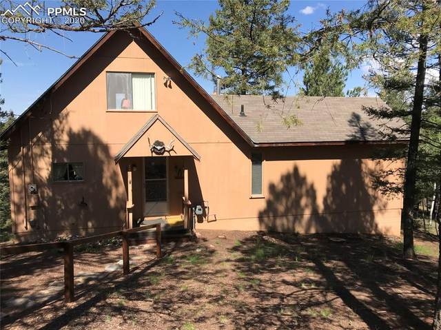 87 Bonanza Circle, Florissant, CO 80816 (#8855710) :: Tommy Daly Home Team