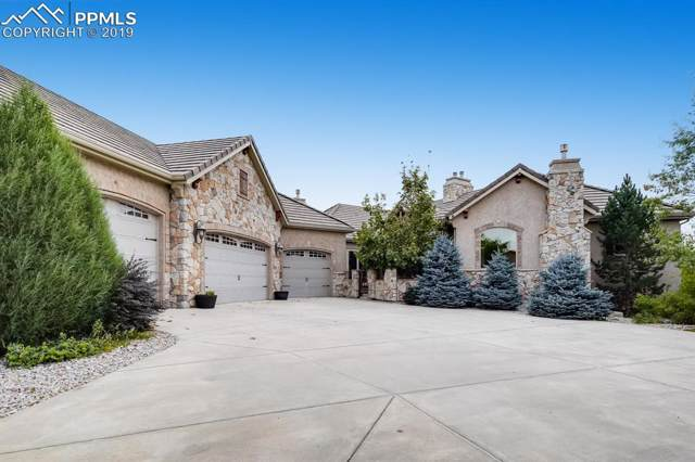5425 Widgeon Point, Colorado Springs, CO 80918 (#8856982) :: Tommy Daly Home Team