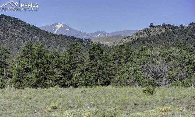 TBD Lot 19 County 1 Road, Cotopaxi, CO 81223 (#8863212) :: CC Signature Group
