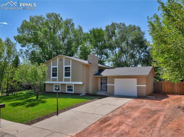 4042 Cooke Drive, Colorado Springs, CO 80911 (#8864764) :: Jason Daniels & Associates at RE/MAX Millennium
