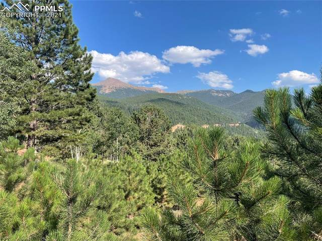 52 Barite Lane, Divide, CO 80814 (#8869299) :: Tommy Daly Home Team