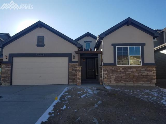 17648 Leisure Lake Drive, Monument, CO 80132 (#8872839) :: CENTURY 21 Curbow Realty