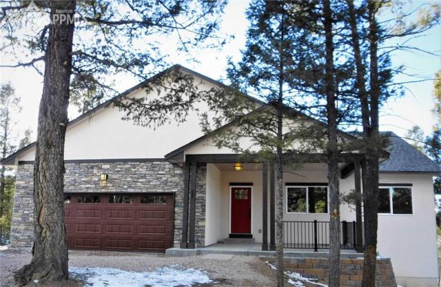 57 Cradle Lake Place, Divide, CO 80814 (#8874204) :: 8z Real Estate