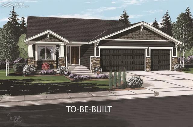 10806 Hidden Brook Circle, Colorado Springs, CO 80908 (#8876236) :: 8z Real Estate
