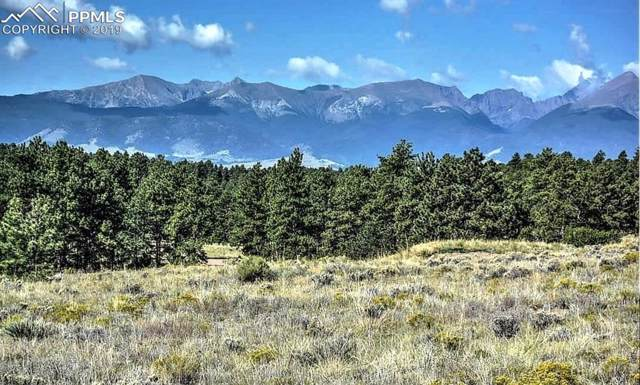 396 Choctaw Trail, Westcliffe, CO 81252 (#8881686) :: Tommy Daly Home Team