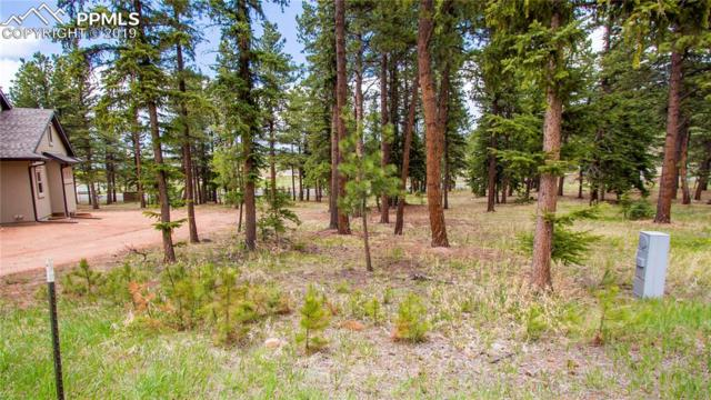 640 Chipmunk Drive, Woodland Park, CO 80863 (#8882552) :: The Peak Properties Group