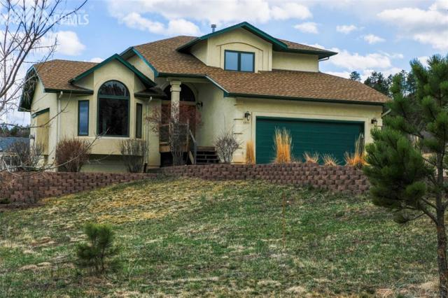 3555 Range View Road, Monument, CO 80132 (#8883589) :: 8z Real Estate