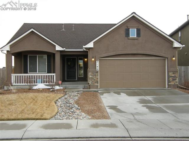 7146 Mustang Rim Drive, Colorado Springs, CO 80923 (#8886216) :: The Treasure Davis Team