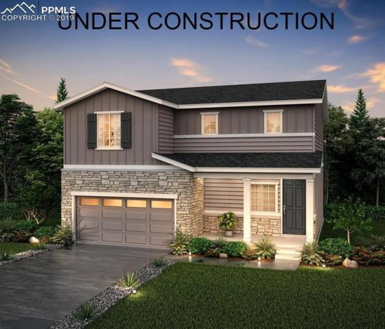 2095 Villageview Lane, Castle Rock, CO 80104 (#8887364) :: 8z Real Estate