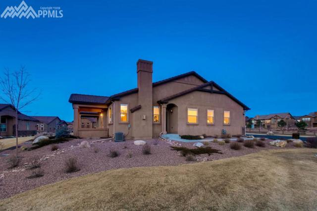 13075 Cake Bread Heights, Colorado Springs, CO 80921 (#8891761) :: The Hunstiger Team