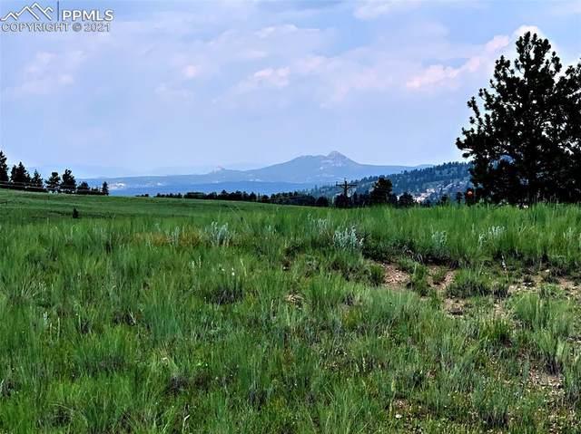 0 N Mountain Estates Road, Florissant, CO 80816 (#8892396) :: Compass Colorado Realty