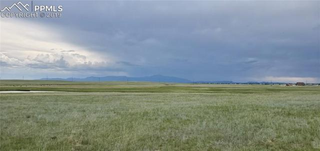 8316 Buckskin Ranch View, Peyton, CO 80831 (#8892745) :: Action Team Realty