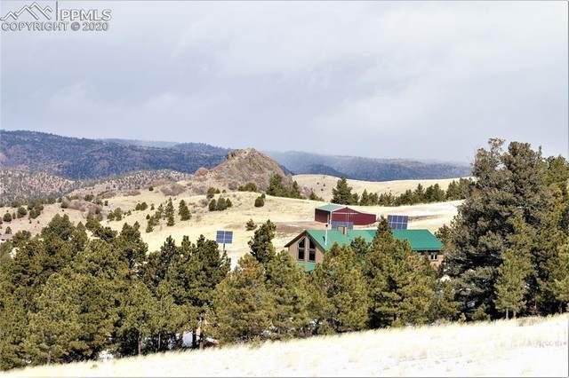 506 Sheep Springs Lane, Canon City, CO 81212 (#8893063) :: 8z Real Estate