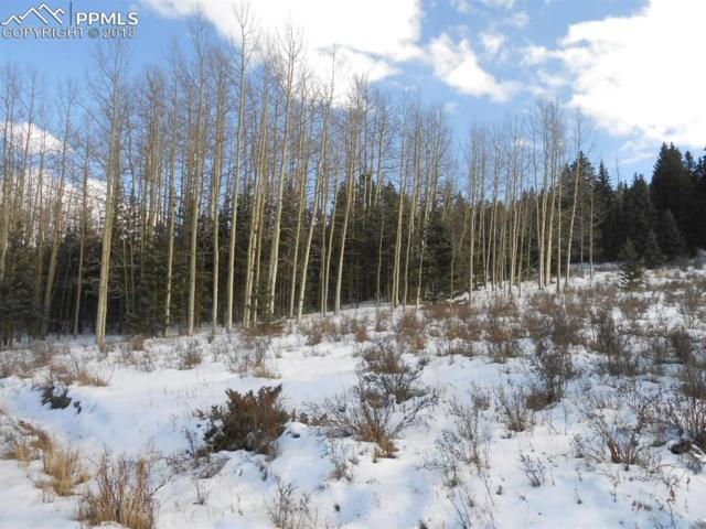 72 Hillside Terrace, Cripple Creek, CO 80813 (#8894969) :: Colorado Home Finder Realty