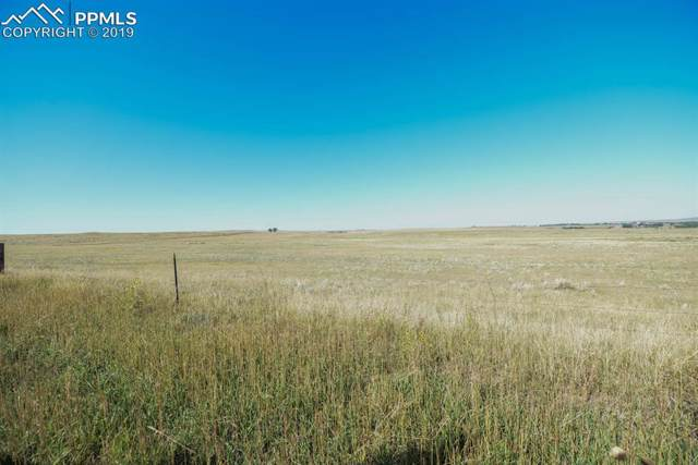 County Road, Simla, CO 80835 (#8896799) :: Perfect Properties powered by HomeTrackR