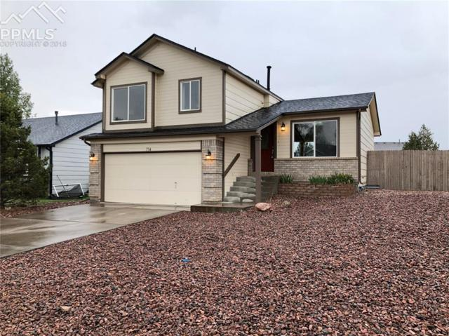 714 Daffodil Street, Fountain, CO 80817 (#8898266) :: Harling Real Estate