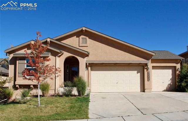 15569 Lacuna Drive, Monument, CO 80132 (#8909328) :: Fisk Team, RE/MAX Properties, Inc.