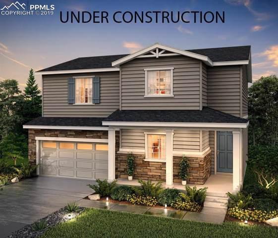 2066 Villageview Lane, Castle Rock, CO 80104 (#8910213) :: 8z Real Estate