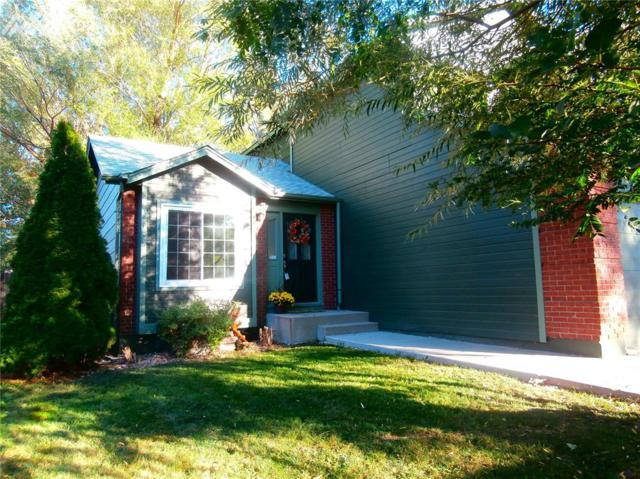 5183 Rushford Place, Colorado Springs, CO 80923 (#8910299) :: 8z Real Estate