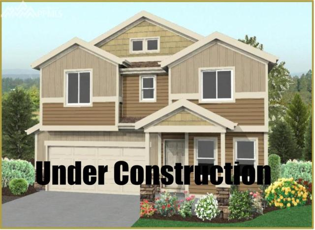 6442 Anders Ridge Lane, Colorado Springs, CO 80923 (#8911062) :: 8z Real Estate