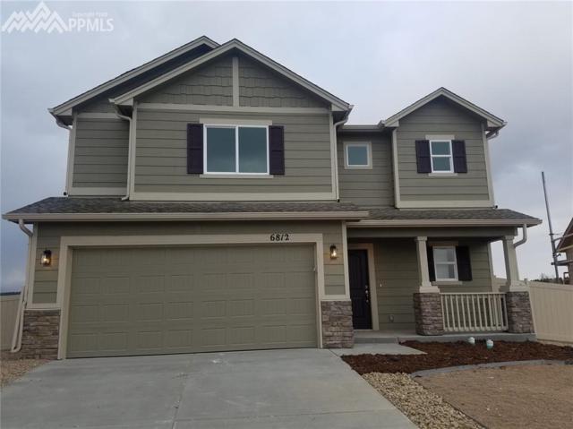6812 Oak Vine Court, Colorado Springs, CO 80908 (#8913073) :: 8z Real Estate