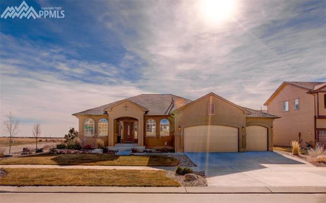 6279 Leon Young Drive, Colorado Springs, CO 80924 (#8915052) :: Jason Daniels & Associates at RE/MAX Millennium