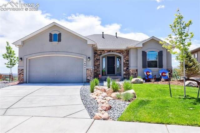15604 Blue Pearl Court, Monument, CO 80132 (#8916845) :: Finch & Gable Real Estate Co.