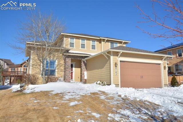 8782 Stony Creek Drive, Colorado Springs, CO 80924 (#8923543) :: The Daniels Team