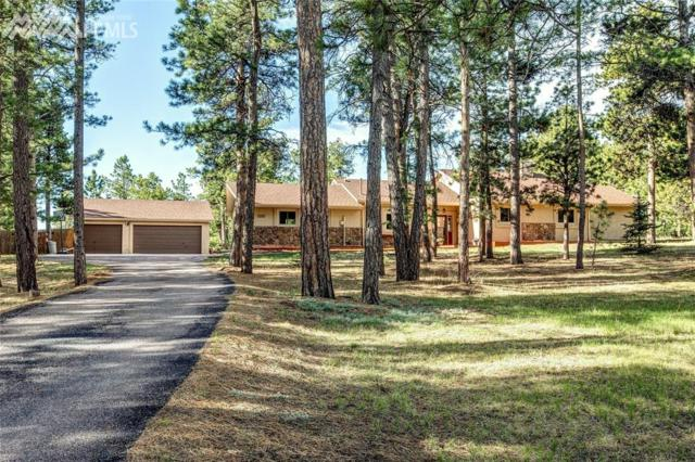 1375 Scottswood Drive, Monument, CO 80132 (#8931530) :: 8z Real Estate
