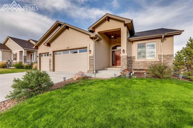 1135 Diamond Rim Drive, Colorado Springs, CO 80921 (#8933056) :: The Treasure Davis Team