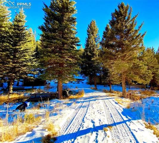880 Gold Dust Creek Road, Florissant, CO 80816 (#8933701) :: The Scott Futa Home Team