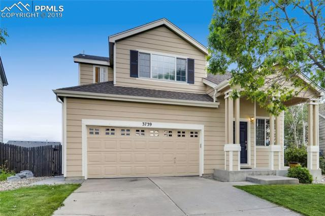 3739 Range Drive, Colorado Springs, CO 80922 (#8936635) :: Tommy Daly Home Team