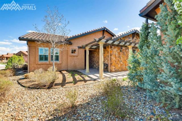 13135 Thumbprint Court, Colorado Springs, CO 80921 (#8941766) :: The Treasure Davis Team