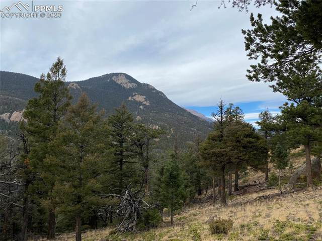 141 Sunrise Peak Road, Manitou Springs, CO 80829 (#8948085) :: Re/Max Structure