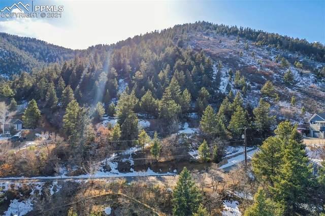 1296 Mica Lane, Colorado Springs, CO 80906 (#8949823) :: The Daniels Team