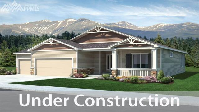 3085 Lakefront Drive, Monument, CO 80132 (#8950012) :: 8z Real Estate
