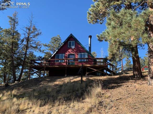 1551 Blossom Road, Woodland Park, CO 80863 (#8950172) :: Tommy Daly Home Team