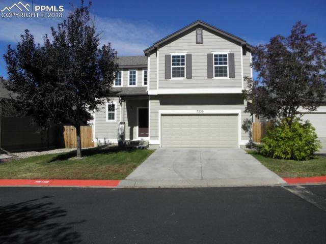 7220 Grand Cascade Point, Colorado Springs, CO 80922 (#8950747) :: Venterra Real Estate LLC