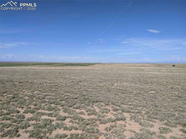 Whittemore Road, Rush, CO 80833 (#8953341) :: 8z Real Estate