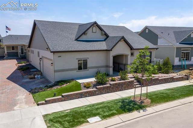 6490 Golden Briar Lane, Colorado Springs, CO 80927 (#8956252) :: 8z Real Estate
