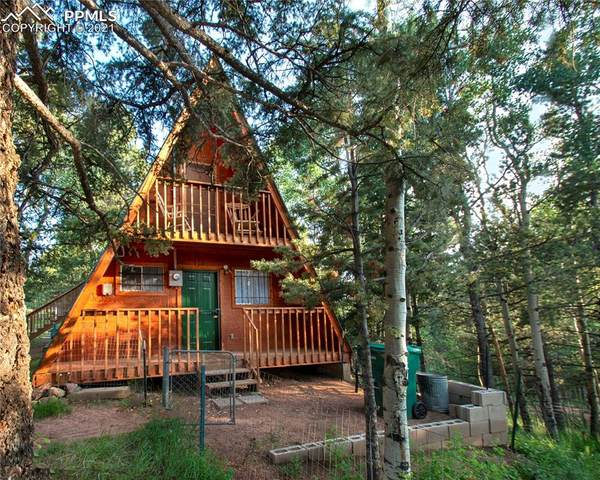 954 Timber Ridge Road, Divide, CO 80814 (#8957994) :: The Dixon Group