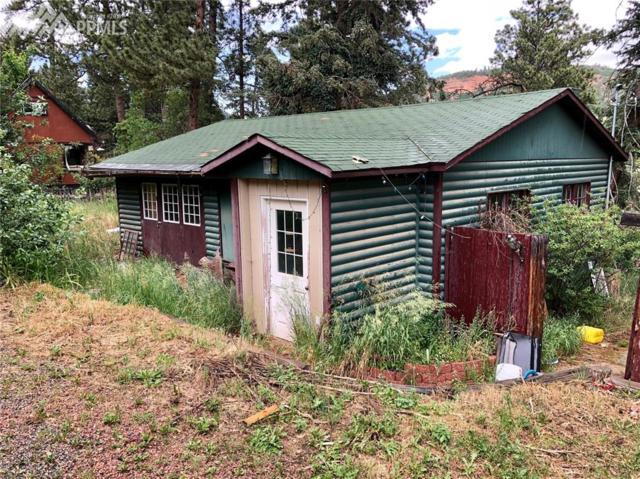 252 Shady Lane, Palmer Lake, CO 80133 (#8959695) :: Action Team Realty