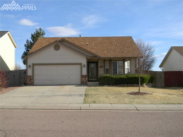 891 Eagle Bend Drive, Colorado Springs, CO 80911 (#8966470) :: RE/MAX Advantage