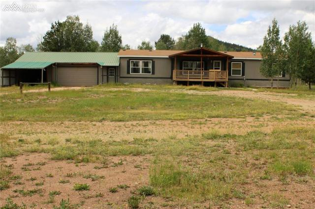 9835 S Highway 67 Highway, Cripple Creek, CO 80813 (#8971891) :: 8z Real Estate