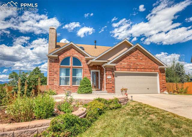 7730 Montane Drive, Colorado Springs, CO 80920 (#8971951) :: 8z Real Estate