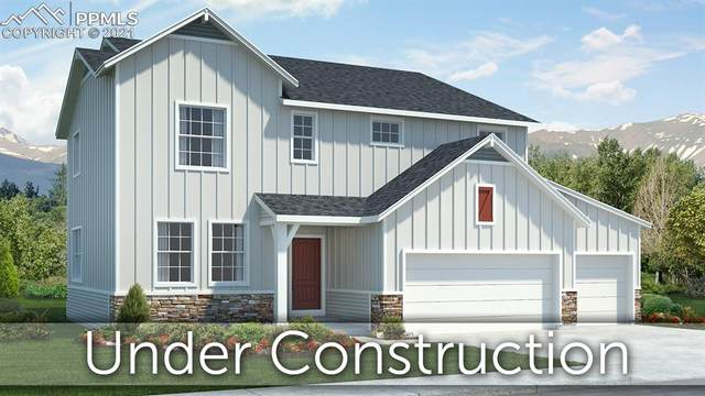 10000 Bison Valley Trail, Colorado Springs, CO 80908 (#8974965) :: The Kibler Group