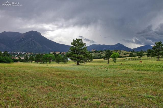 1560 Northfield Road, Colorado Springs, CO 80919 (#8978749) :: Action Team Realty