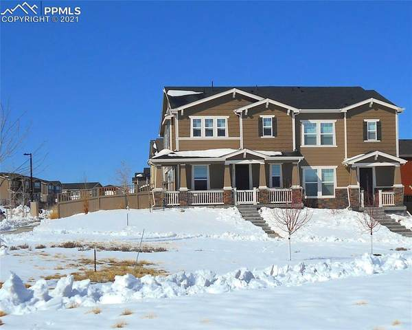 2801 Summer Day Avenue, Castle Rock, CO 80109 (#8979971) :: Tommy Daly Home Team